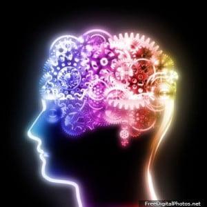 A verdade sobre os lados do seu cérebro