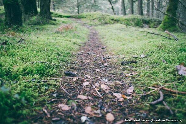 Você precisa dar o primeiro passo para trilhar seu caminho